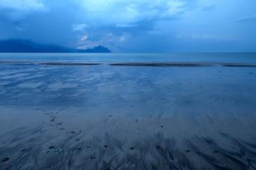 Unbelievable azure beach at dusk. Adorable bearded pig tracks.