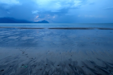 Unbelievable azure beach at dusk. Adorable bearded pig tracks.