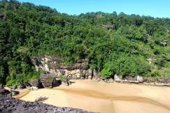 Bako vegetation includes dipterocarp forest, scrub-like padang, swamp forest, mangroves, and cliff vegetation.